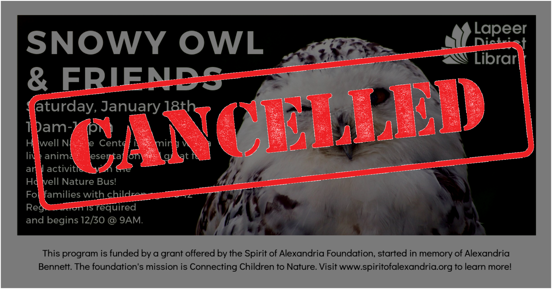 CANCELLED: Snowy Owl and Friends!