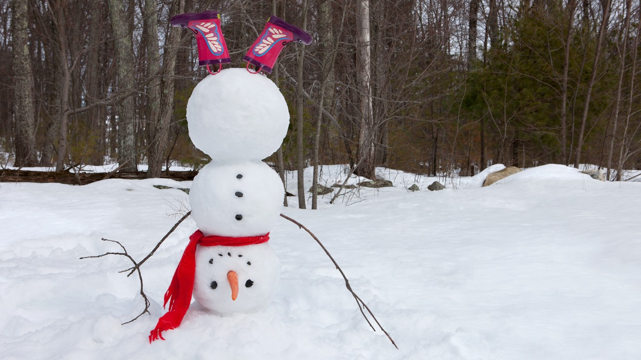 Family Storytimes @ the Museum: Silly Snowmen