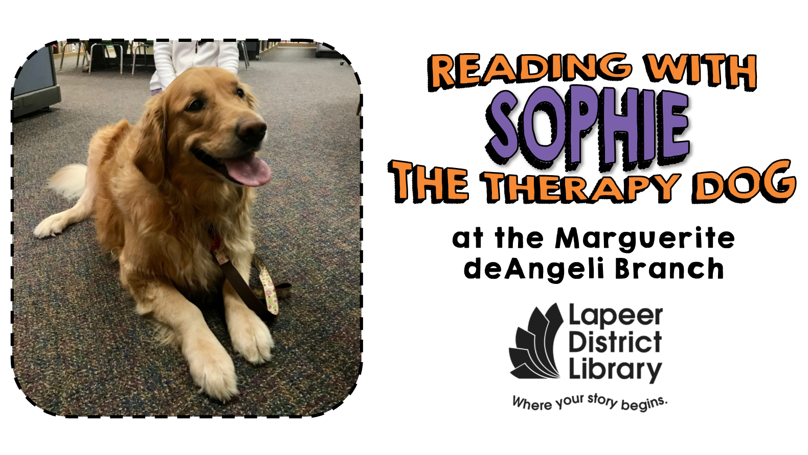 Reading with Sophie the Therapy Dog