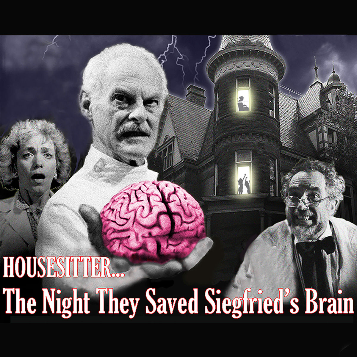 HouseSitter… The Night They Saved Siegfried's Brain at the Kalamazoo State Theatre