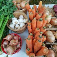 Franklin Farmers' Market : Market on the Green