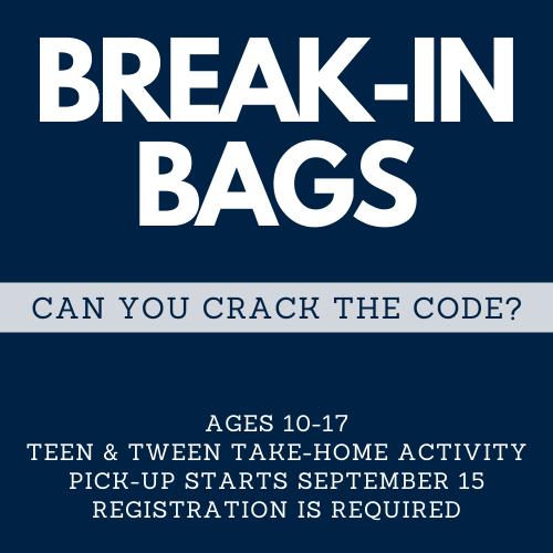 Break In Bags