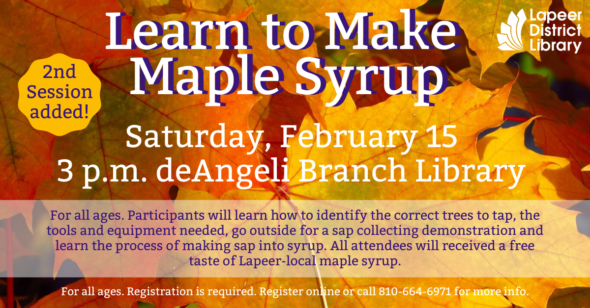 Learn to Make Maple Syrup 2ND SESSION