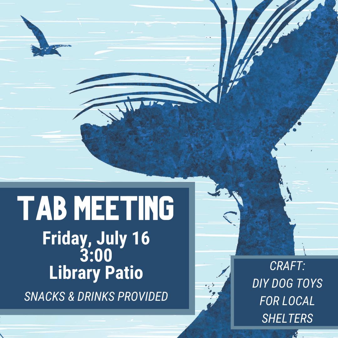 TAB Meeting