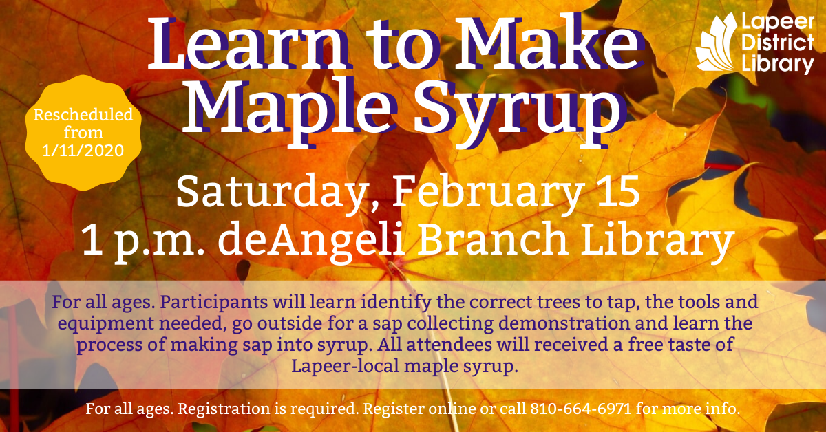Learn to Make Maple Syrup