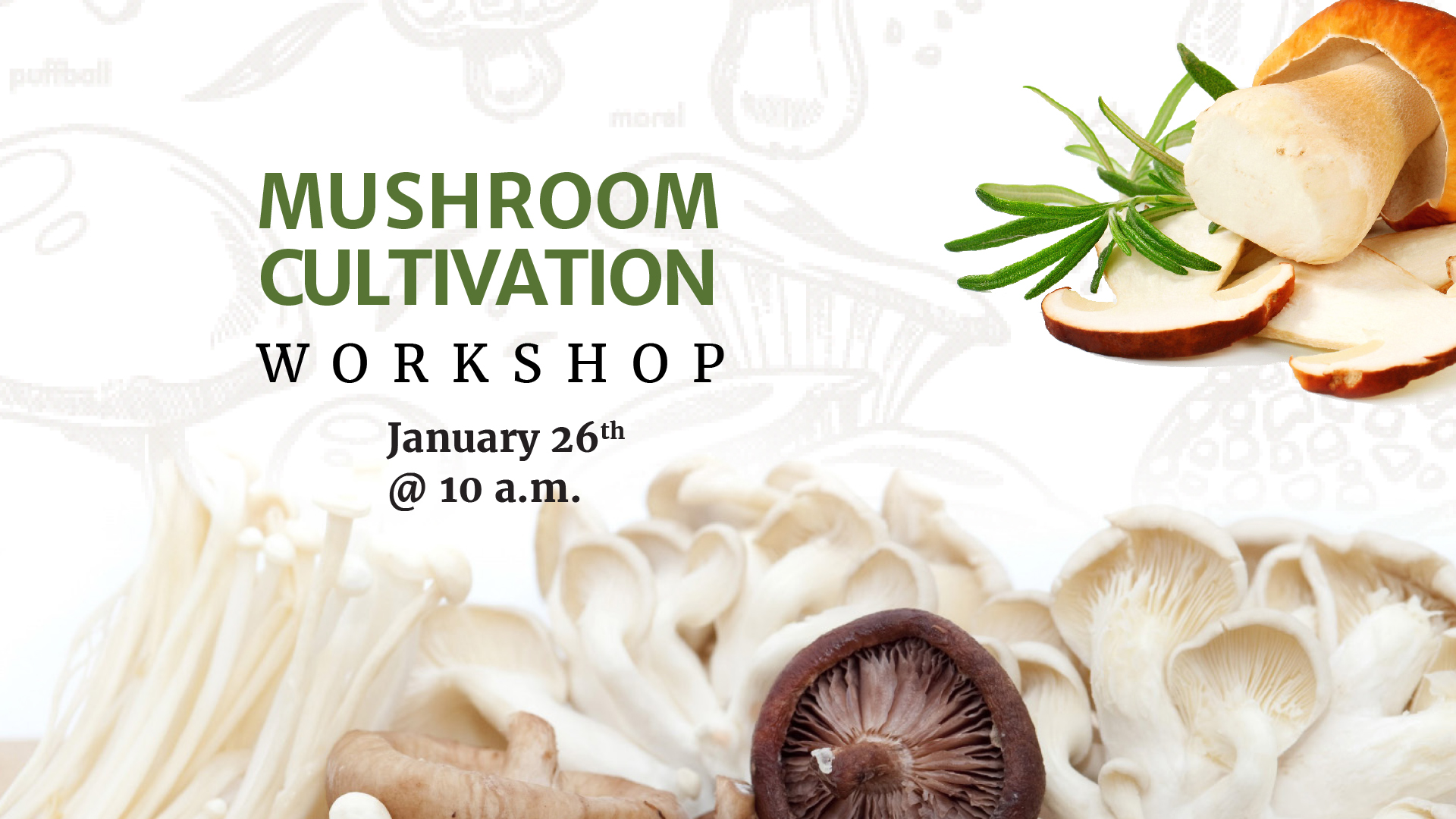 Mushroom Cultivation Workshop