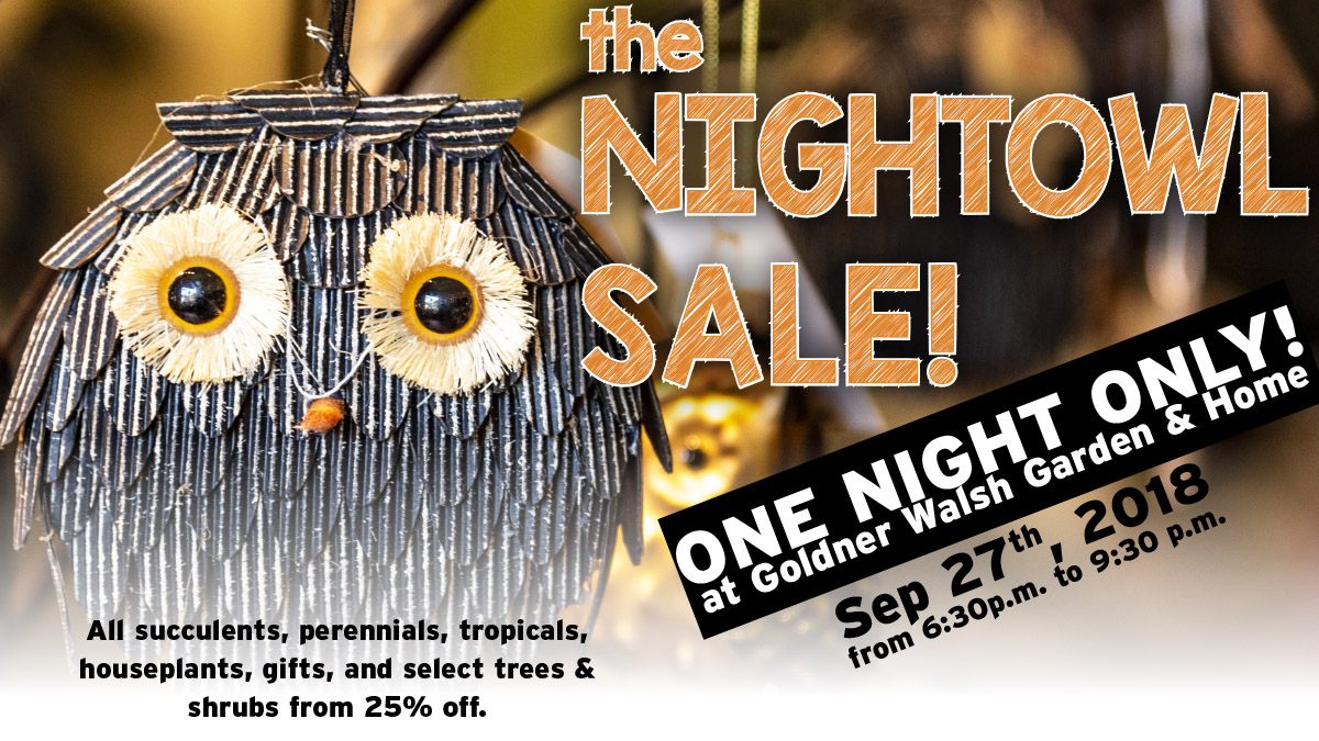 The Night Owl Sale - Thursday, September 27, 2018, 6:30 PM